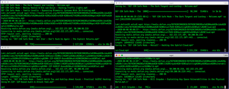 Screenshot of wget commands running